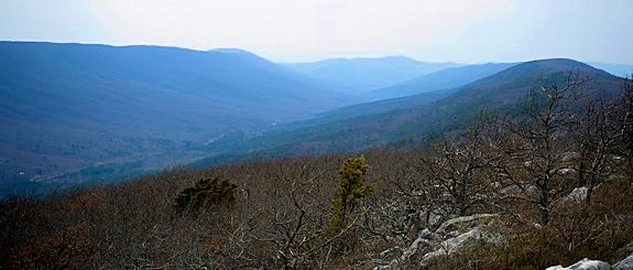 Black Fork Mountain wilderness, looking west from summit