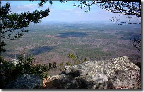 Cheaha Wilderness Area in Alabama