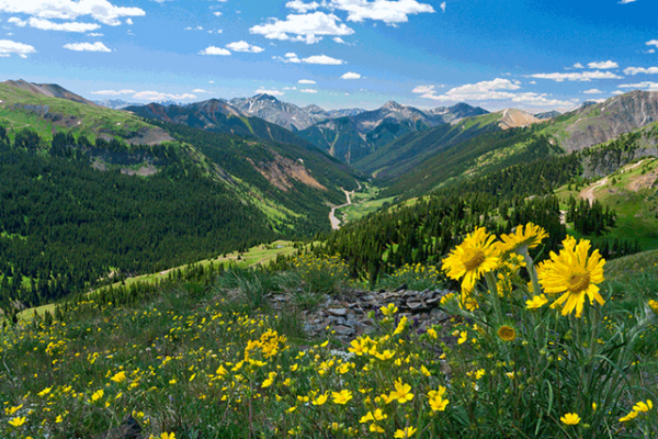 West Slopes of Jedediah Smith Wilderness, Caribou-Targhee National Forest, WY